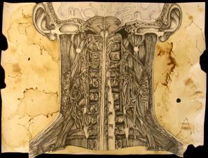 artistic representation of human head